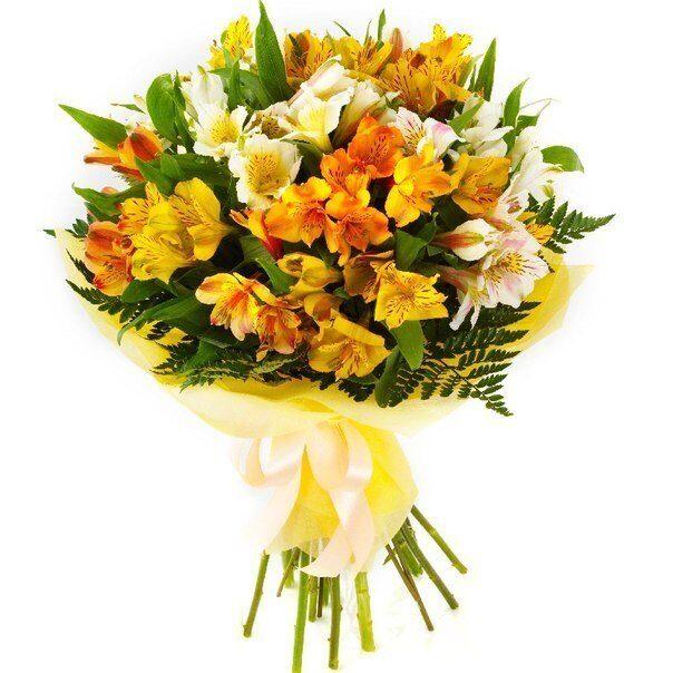 Заказ букетов херсон, орхидеи купить недорого
